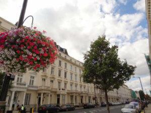Estudios en Belgrave Road Londres